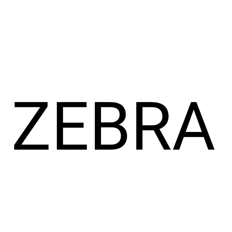 Zebra Scanner DS2208-SR7U2100SGW DS2208-SR